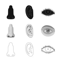 isolated object of human and part sign collection vector image