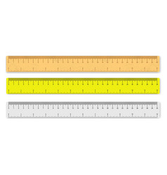 isolated realistic ruler vector image