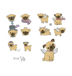 set little pugs cute animals vector image