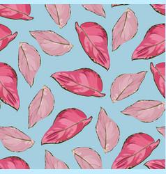 tropical vintage red aglaonema modestum pattern vector image