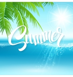 Summer holidays background with palm vector image