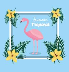 summer tropical season vector image