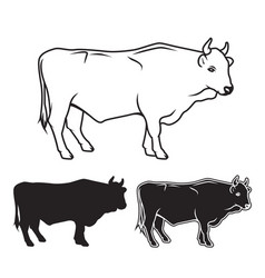 Hand drawn bull set vector