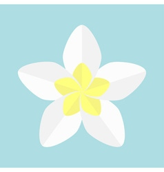 Plumeria Tropical flower icon Frangipani Hawaii vector image