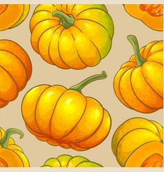 Pumpkin fruit pattern on color background vector