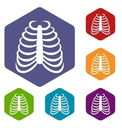 Rib cage icons set vector