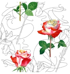 Seamless Pattern with Rose-02 vector