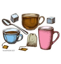 set hand drawn colored teaspoon tea bag vector image