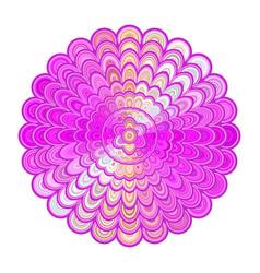 colorful abstract floral mandala art - digital vector image vector image