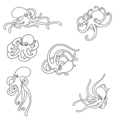 octopus coloring set vector image
