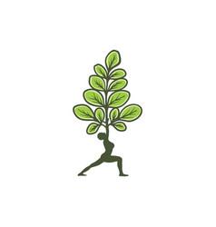 basic rgbmoringa and yoga logo vector image