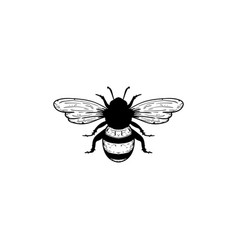 bee icon design template isolated vector image