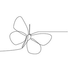 continuous line butterfly isolated on white vector image