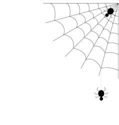 holiday halloween decoration spider web vector image