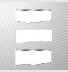 horizontal torned off piece of paper with spiral vector image