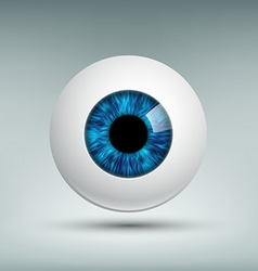Human eyeball Stock vector image