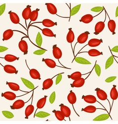 Rosehip seamless background vector image