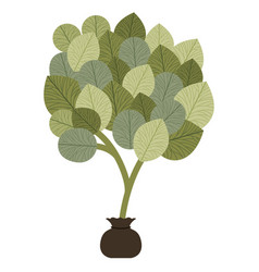 Tree plant cultivate isolated icon vector