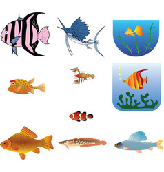 trunkfish vector image