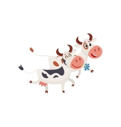 Two spotted cows walking together romantically vector image