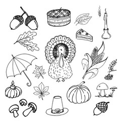 collection of elements for thanksgiving day vector image