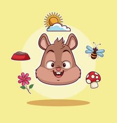 Squirrel head cartoon vector