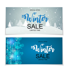 winter sale background special offer banner vector image