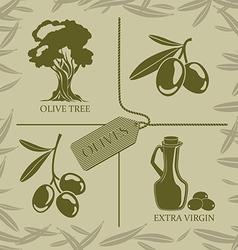 Set for olive labels vector image vector image