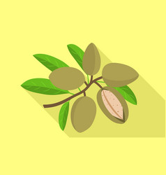 Almond branch icon flat style vector