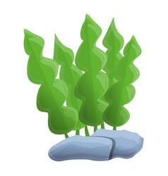 aquarium leaf plant icon cartoon style vector image