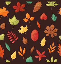 Autumn leaves background banner vector