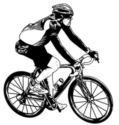 bicyclist sketch vector image