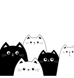 black white cat head face set scandinavian vector image