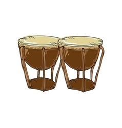 Bongos musical instrument vector