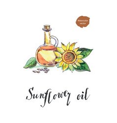bottle of sunflower oil sunflower and seeds vector image