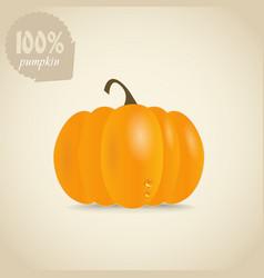 Cute orange pumpkin vector