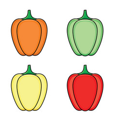 flat sketch fresh ripe bellpepper set vector image