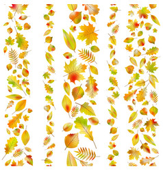 Set of seamless borders from autumn leaves eps 10 vector