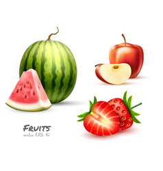 watermelon apple strawberry fruit slice set vector image