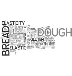 why do we need to knead text word cloud concept vector image vector image