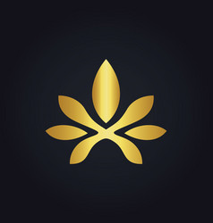 Abstract flower beauty gold logo vector