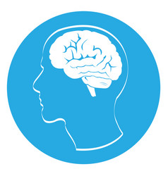 isolated head with a brain vector image