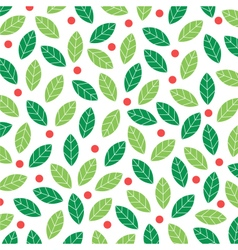 mistletoe background vector image vector image