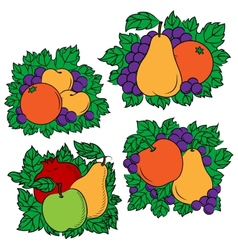 Vintage colorful fruit compositions vector