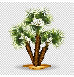 Gardening theme wtih palm tree vector