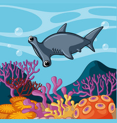 Hammerhead shark swimming under the ocean vector