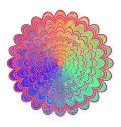 multicolored abstract floral mandala design vector image