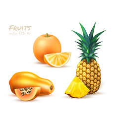 Pineapple papaya orange realistic exotic fruit set vector