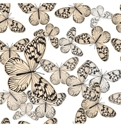 Seamless pattern with vintage white butterfly vector image