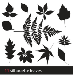 Silhouette leaves vector image